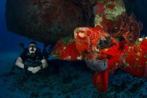 SDI Open Water Sidemount Diver
