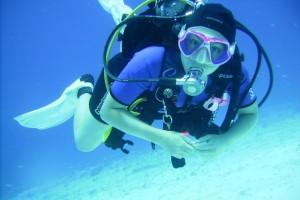 SDI Inactive Diver/Refresher Diver